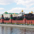 Moscow Kremlin Wall — Stock Photo #6734134