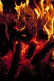 Palivové dříví — Stock fotografie