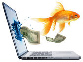 Gold fish jumping from Laptop isolated — Stock Photo