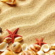 Sea shell on sand — Stock Photo #5916177