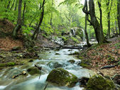 Natural Spring Waterfall — Stock Photo