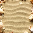 Sea shell on sand — Stock Photo #5920549