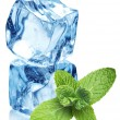 Ice cubes and mint leaves on a white — Stockfoto