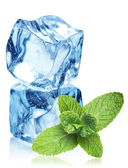 Ice cubes and mint leaves on a white — Stock Photo