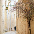Mdina street - Stock fotografie