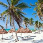 Caraïbische kust — Stockfoto