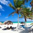 Stock Photo: Beautiful Caribbebeach