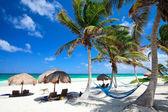Bela praia do caribe — Fotografia Stock