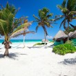 Beautiful Caribbean beach — Stock Photo #6051544