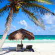 Stock Photo: Caribbecoast