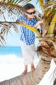 Little boy on palm tree — Stock Photo