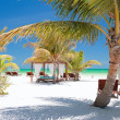 Perfect tropical beach — Stock Photo #6690205
