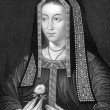Elizabeth of York — Stock Photo