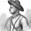 Stock Photo: Tipu Sultan