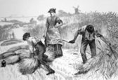 Argicultural scene from the 1800s — Stock Photo