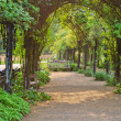 Green Archway in Hyde Park, London, UK — Stock Photo #5546893