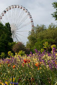 Ferry wheel in Hyde Park, London, UK — Foto Stock