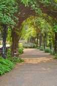 Green Archway in Hyde Park, London, UK — Stock Photo