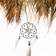 Dreamcatcher — Foto de stock #6180783