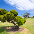 Korean Bell of Friendship pagoda and park - Foto Stock