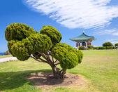 Bell coréenne de la pagode de l'amitié et le parc — Photo