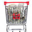 Market cart with money — Stock Photo #5387241