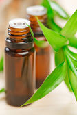 Aromatherapy concept — Stock Photo
