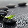 Massage stones with leaf — Stock Photo