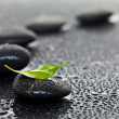 Massage stones with leaf — Stock Photo #5804173