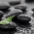 Massage stones with leaf — Stock Photo #5804194