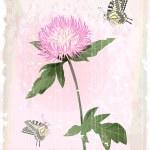 Pink aster flower — Stock Vector