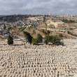 Ancient cemetery in Jerusalem — Stock Photo #5907390