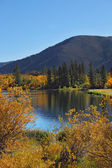 The autumn on Northern lake — Foto Stock