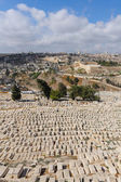 An ancient cemetery in Jerusalem — Stock Photo