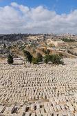 древнее кладбище в иерусалиме — Стоковое фото