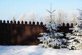 Pohádkový plot a stromy na sněhu — Stock fotografie