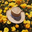 The elegant straw hat is left by the tourist — Stock Photo #5931023