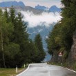 Wet road in the Swiss Alps — Foto Stock