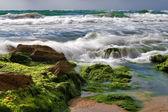 Stone surf — Stock Photo