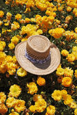 The elegant straw hat is left by the tourist — Stock Photo