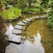 Traditional Japanese garden. A stream - Photo