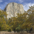 El Capitan — Stock Photo #5996213