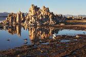 Tufsteen stalactieten zijn terug te vinden in meer — Stockfoto