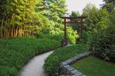 竹林中的木制门 — 图库照片