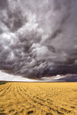 Improbable thundercloud — Stock Photo