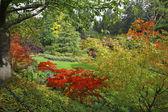 The landscape gardening art — Stock Photo