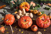Carnival of pumpkins — Stock Photo