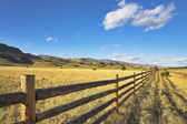 Fence. — Stock Photo