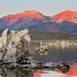 Lake shallow, in it set of picturesque reeves of the Tufa — Stock Photo #6008713