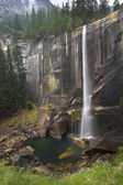 Cachoeira em uma madeira. — Foto Stock